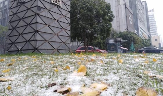 重庆快递建设项目成功获批城乡冷链和国家物流枢纽建设中央预算内投资补助
